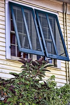 Bermuda Style Exterior Shutters For My Bedroom Windows