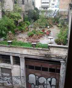 bugbite7:  Whether a three-acre farm or a downtown window box, a garden is a miraculous place - and hopefully, a joyful one.