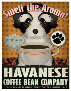 Havanese Coffee Bean Company Original Art by DogsIncorporated