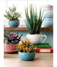 25 ιδέες για να αναβαθμίσεις τις γλάστρες στο μπαλκόνι και τον κήπο σου…