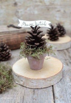 Placeholder with fir cones # table decoration christmas - placeholder with fir . Pine Cone Crafts, Christmas Projects, Holiday Crafts, Christmas Holidays, Christmas Ornaments, Christmas Christmas, Natal Natural, Deco Table Noel, Pine Cone Decorations