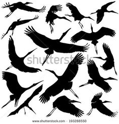 Find Vector Illustration Crane Silhouettes stock images in HD and millions of other royalty-free stock photos, illustrations and vectors in the Shutterstock collection. Hirsch Silhouette, Silhouette Art, Bird Drawings, Easy Drawings, Watercolor Illustration, Watercolor Paintings, Crane Drawing, Heron Tattoo, Disney Princess Pictures