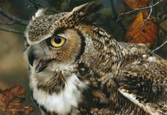 """Carl Brenders In Focus Great Horned Owl----Brenders' insistence on anatomical perfection in his paintings stems from his philosophy that nature, itself, is perfection: """"That is why I paint the way I do with so much detail and so much realism — I want to capture that perfection,"""" he says."""