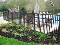 Best models of pool fence and matching swimming pool gates. |