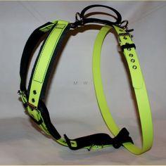 Biothane harness