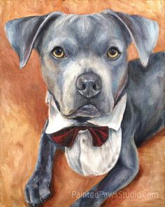My Painting Apprentice, Bauer by Painted Paws Studio #petportrait #pitbull #mutt #petpainting