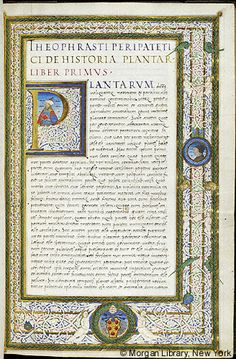 De historia plantarum et De causis plantarum, Italy, 1523-1534, MS M.118 fol. 5r - Images from Medieval and Renaissance Manuscripts - The Morgan Library & Museum