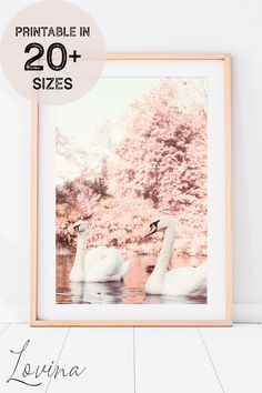 Lovely Printable Poster with Cute Floral Animal Photography! ♥︎ INSTANT Download! Easily customisable to 20+ frame sizes! Downloadable Art. Printing Services, Online Printing, Floral Prints, Art Prints, Frame Sizes, Nursery Wall Art, Animal Photography, Cute Art