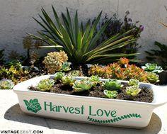 Making Good - DIY Repurposed Succulent Planter