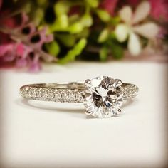 Diamond Rings, Diamond Engagement Rings, Round Diamonds, Cathedral, Band, Country, Jewelry, Jewellery Making, Sash