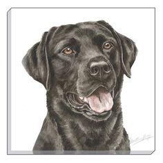 WaggyDogz Black Labrador 40cm Canvas Print Labrador Dog Breed, Labrador Retriever, Hunting Drawings, Rock Painting Designs, Cute Cats And Dogs, Dog Tattoos, Black Labrador, Dog Breeds, Dog Lovers