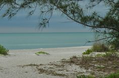 Morning on Longboat Key