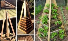 jardin-vertical-forme-pyramide-bois-parterres-fraises-superposés.jpg (750×461)