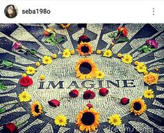 Imagine 🎶