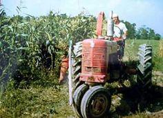 1954 FARMALL SUPER M-TA