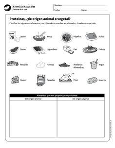 Proteínas, ¿de origen animal o vegetal?