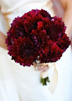 The bridesmaids will carry round bouquets of purple magenta dahlias wrapped in deep, red ribbon all the way to the ends of the stems.