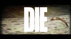 Black Stone Cherry - Like I Roll (LYRIC VIDEO)