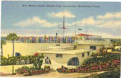 linen postcard | Vintge Florida Postcard - Marineland - Linen (Unused) Marine Studios ...