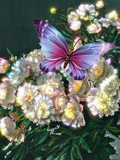 Download Animated 240x320 «Красивые цветы» Cell Phone Wallpaper. Category: Flowers