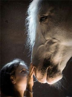 Magical...An innocent yet gentle touch of a little girl for another yet gentle creature..