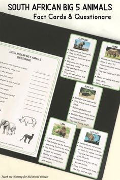 """Learn about South African """"Big 5 Animals"""" - Kid World Citizen Animal Activities, Fun Activities For Kids, African Elephant, African Animals, Disney Canvas Art, Alternative Education, Big Animals, Africa Art, Comprehension Activities"""