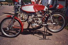 Derbi 50cc production racer Men Warehouse, Baby Bike, Hell On Wheels, Racing Motorcycles, Small Engine, Road Racing, Hercules, Sport Bikes, Custom Bikes
