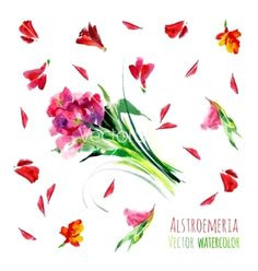 Watercolor flowers vector - by vetryanaya on VectorStock®