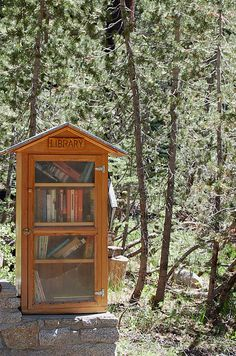 flock0fbirds: When i went camping, we hiked up to this little village and this was their library.
