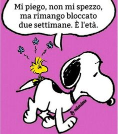 Snoopy Love, Snoopy And Woodstock, Snoopy Comics, Cute Animal Videos, Graphic Quotes, Peanuts Snoopy, Vignettes, Motivation, Frases