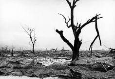 Not originally published in LIFE. Neighborhood reduced to rubble by atomic bomb blast, Hiroshima, 1945.