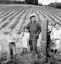 Some managed to fare a lot better than others.  The Arnold children and mother on their newly fenced and newly cleared land. Note strawberry plants.  Western Washington, Thurston County, Michigan Hill.  photographer: Dorothea Lange  1939 Aug.