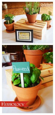 harry potter herbology- this is for a bridal shower, but has some really cute decorating ideas