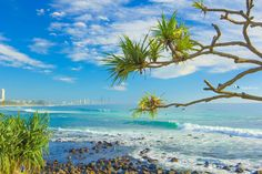 Burleigh Heads, Gold Coast, Queensland (photo by keykodesign) Great Places, Beautiful Places, Coral Garden, Land Of Oz, Airlie Beach, Beach Landscape, Once In A Lifetime, Great Barrier Reef, Beach Fun
