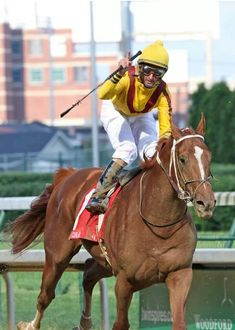 Preakness Stakes Winner 2007  Curlin