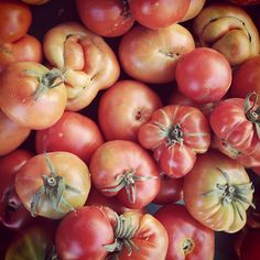Heirloom Tomatoes  Photo by designconundrum • Instagram