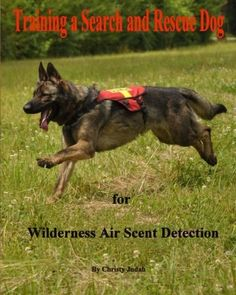 Training a Search and Rescue Dog: for Wilderness Air Scent, http://www.amazon.com/dp/1500141968/ref=cm_sw_r_pi_awdm_7Ii9wb07YQCM3