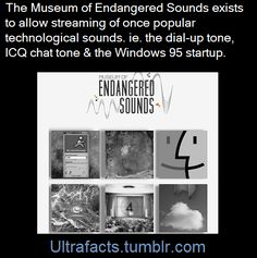 ultrafacts:  Here is the site to listen: [x](Fact Source) Follow Ultrafacts for more facts