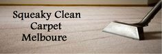Same Day Carpet Steam Cleaning Services.