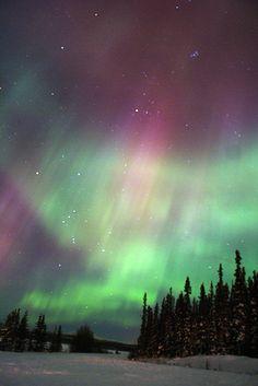 Aurora in Whitehorse, Yukon, Canada