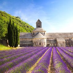 Check out the lavender fields, sip on rosé, and explore the gorgeous old cities in the South of France for an incredible escape.