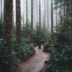 Rattlesnake Ridge Trail in Washington State