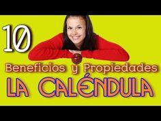10 Propiedades y Beneficios de La Calendula - YouTube