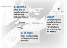 Map of fossil-rich sites in Nova Scotia Beach Rocks, Blue Beach, Prince Edward, New Brunswick, Nova Scotia, Fossils, Mystery, Map, Location Map