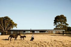 Carr and Jackson Clements Burrows Architects' Red Hill Farm House is inspired by modernism and agricultural architecture Australian Interior Design, Interior Design Awards, Concrete Facade, Modern Mountain Home, Jackson, Timber Cladding, Courtyard House, Ranch Style, Bricks