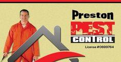 San Antonio Pest Control Termites Bed Bugs | San Antonio, TX Exterminators | Schertz | Cibolo