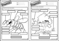 Etiquettes, lire, lecture, Cp, Ce1, printemps, nature, comprendre, écrire, copier, dixmois