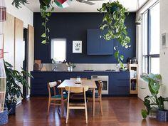 cozinha azul e plantas na decoração