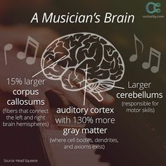 Musician's brain