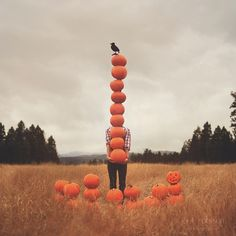 pumpkin tower with black crow